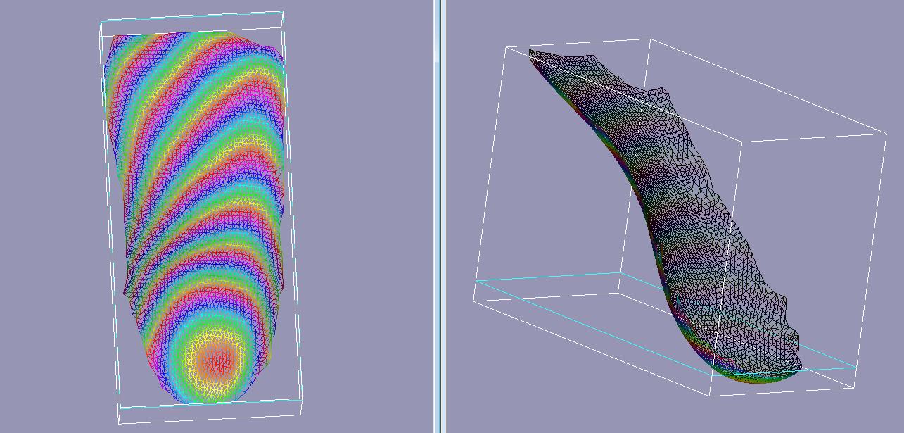 3D printed orthotics scan